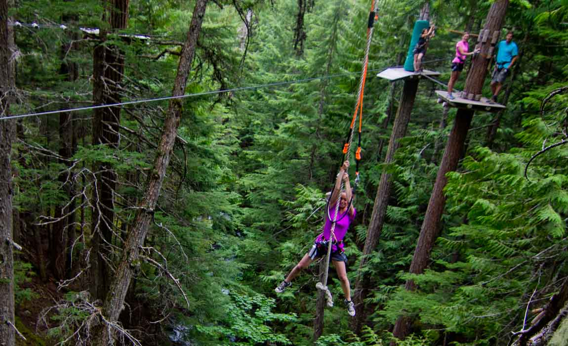 Whistler Treetop Adventure Tours