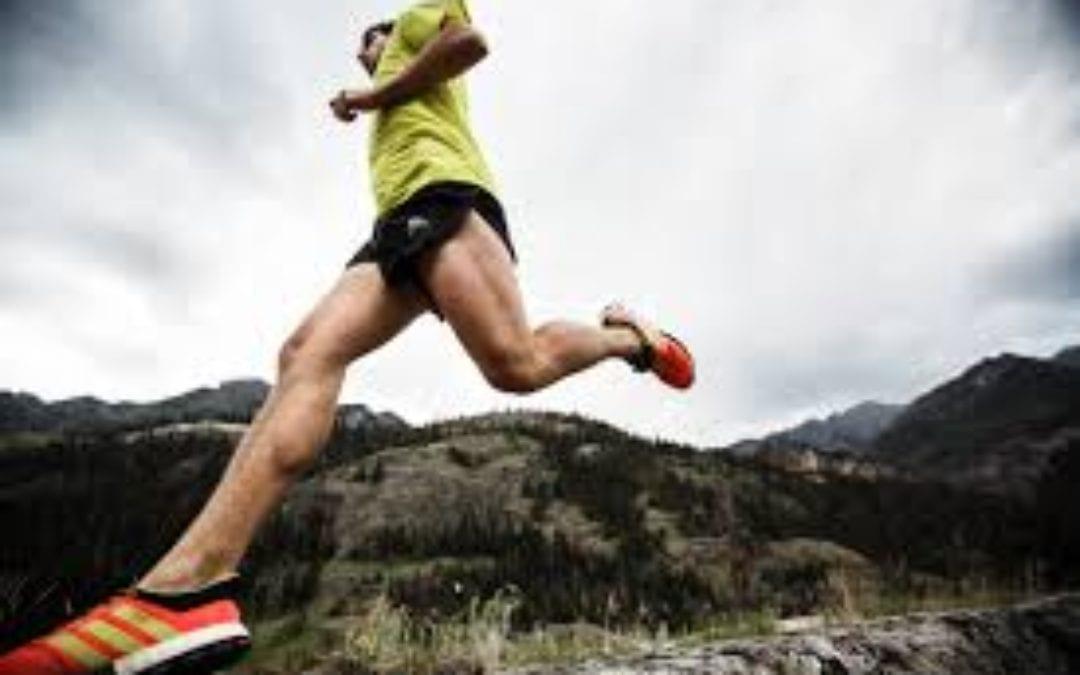 The North Face Whistler Half Marathon
