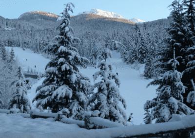 Snowridge VIew